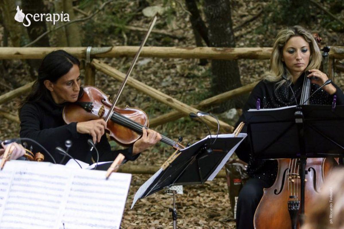 Escursione e concerto di musica classica tra gli ulivi millenari